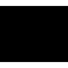 ЭПМГГО